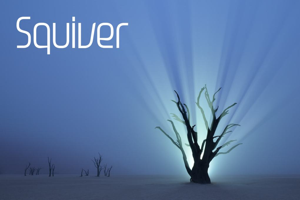 Squiver - African Photo Safaris