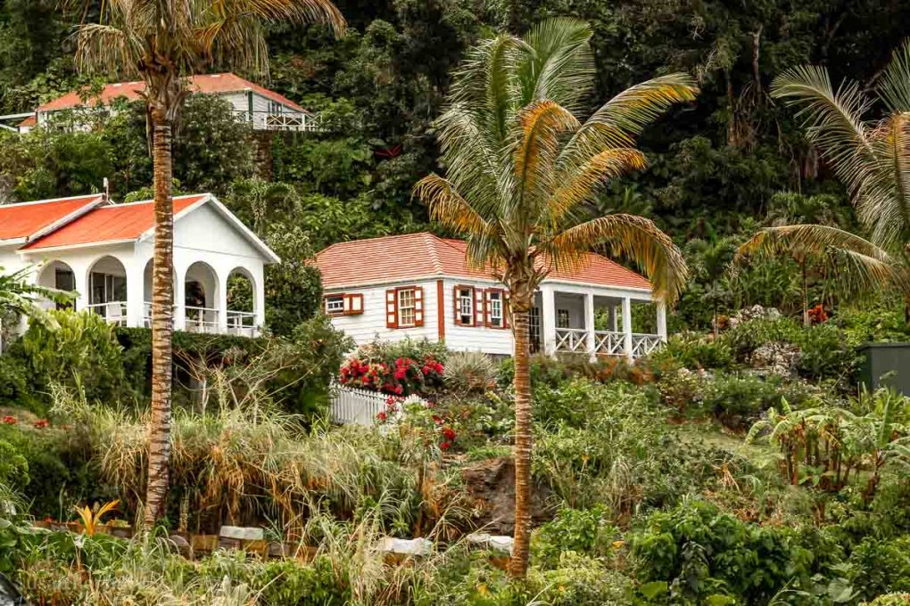 Saba cottages on a hill surrounded by palm trees