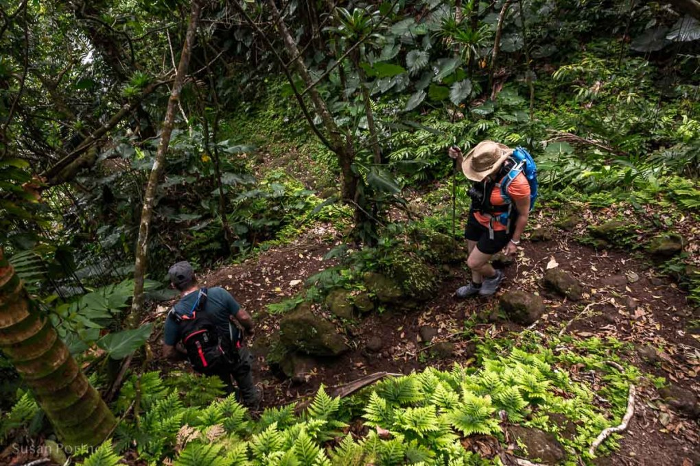 "Sherry Ott and ""Crocodile James"" Johnson hiking on the Sandy Cruz trail on Saba Island"