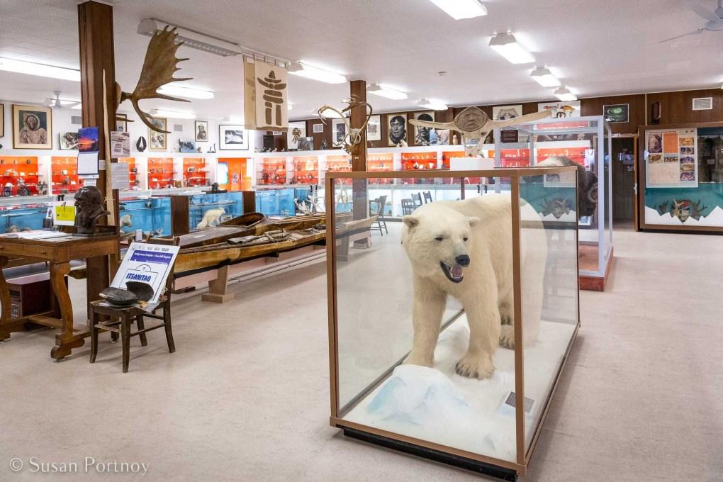Stuffed polar bear inside the Itsanitaq Museum  in Churchell