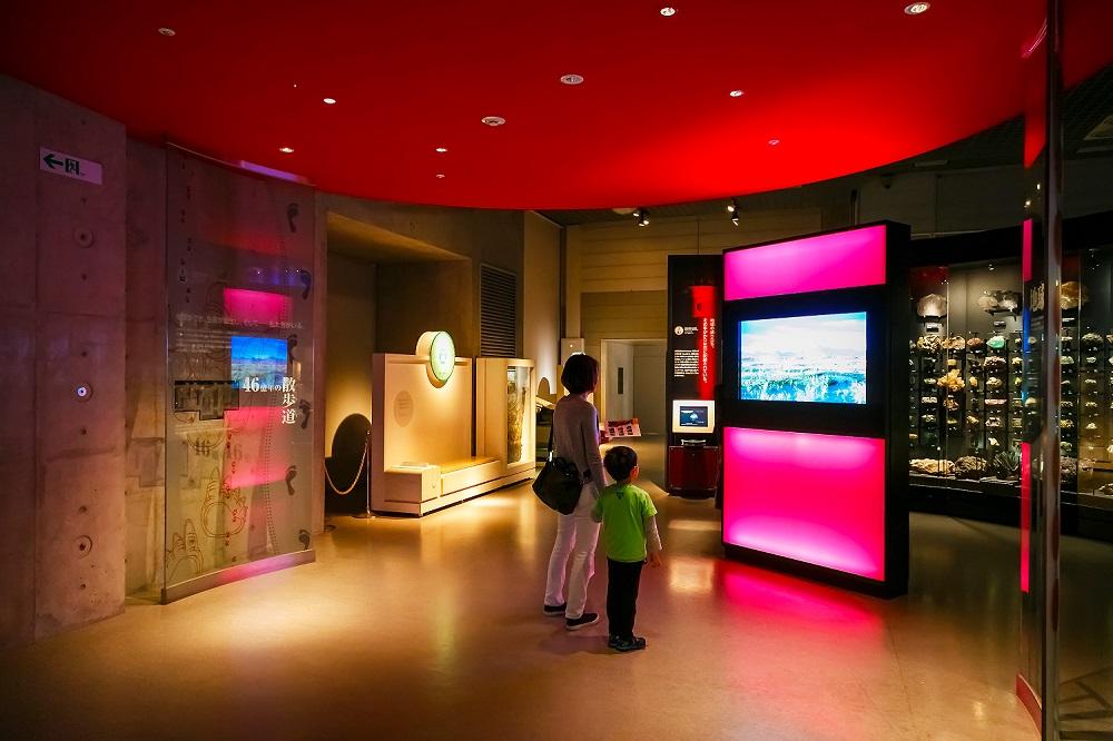 Attractive Exhibition Displays