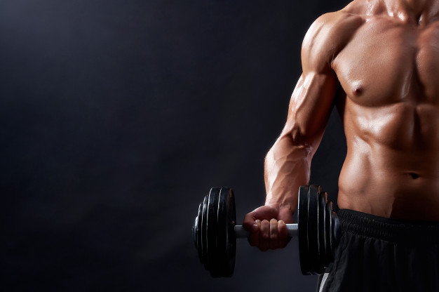 Gaining Muscle Mass
