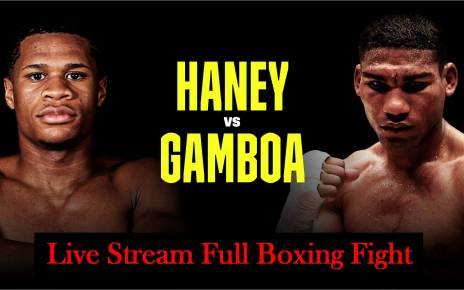 Devin Haney vs Yuriorkis Gamboa reddit streams free