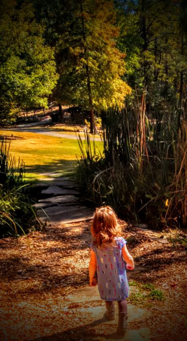 Walking The Path To Truth by Sheila Gail Landgraf