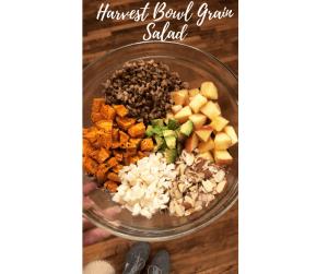 Harvest bowl grain salad recipe