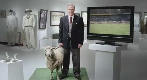 Image result for sheep tv