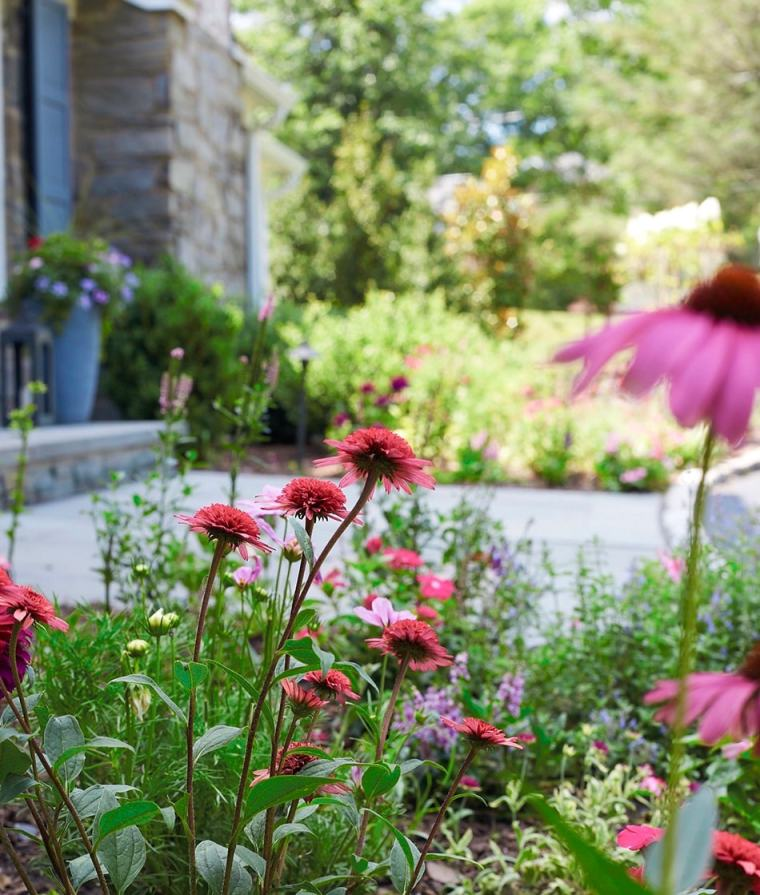 flowers by walk and steps for home garden gallery addition august 2020