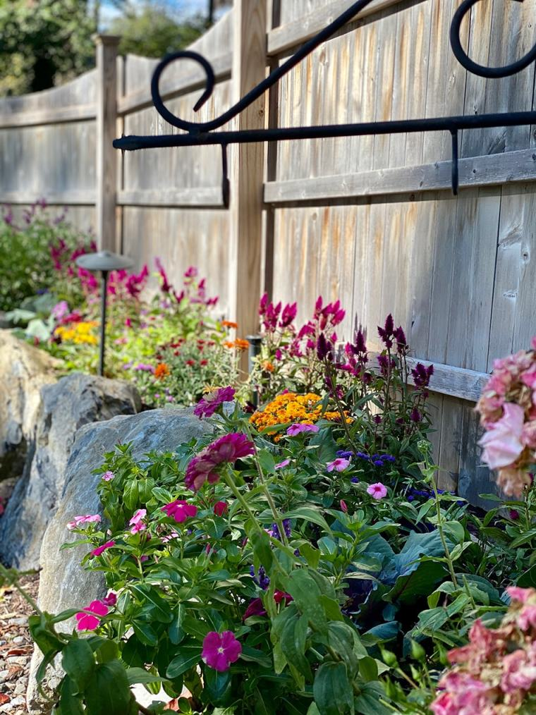 Fall Magic Garden client story Maplewood New Jersey
