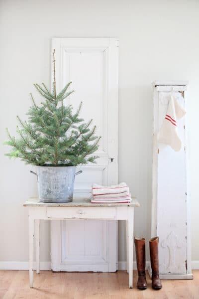 small-christmas-tree-in-a-zinc-bucket