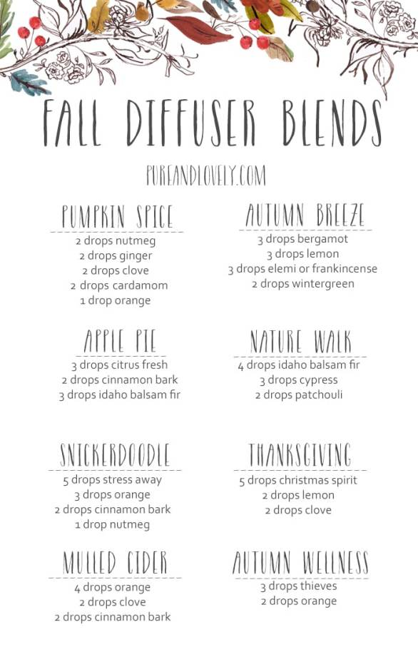Fall Essential Oil Diffuser Blends Instead of Candles!