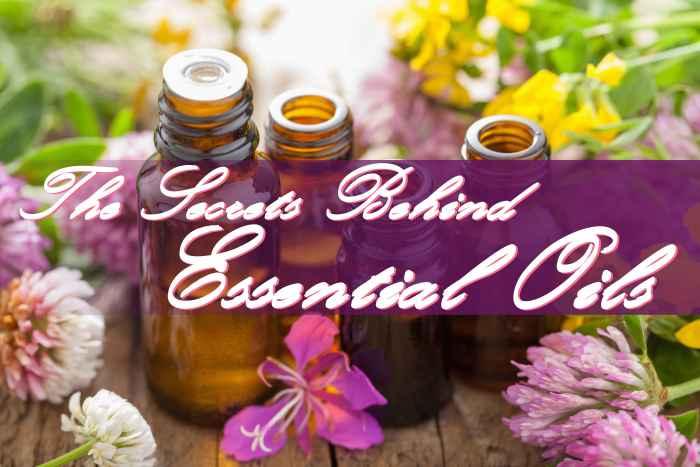 Essential Oil Secrets-min