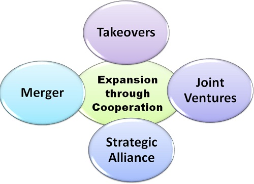 8 Expansion-through-Cooperation.jpg
