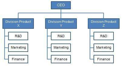 topic 8.2 divisional.jpg