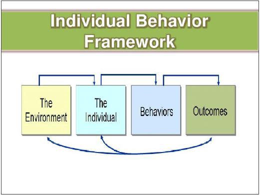 1.1 individual_behavior_framework.jpg