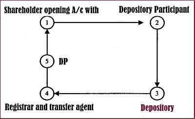 3.1 Dematting-procedure.jpg
