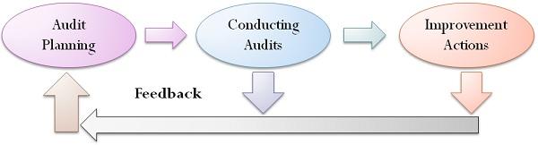 10.3 audit-process