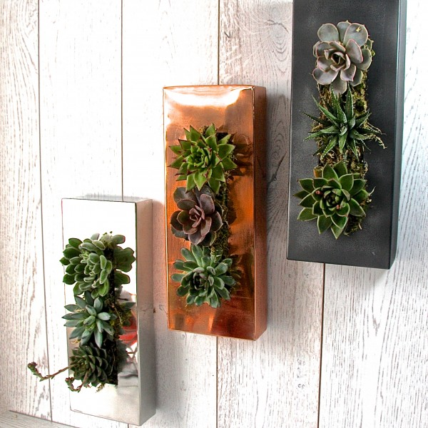 http://www.notonthehighstreet.com/Interesting ways to Display Plants - Small Space Livingthelondongardentradingco/product/copper-living-wall-art-planter