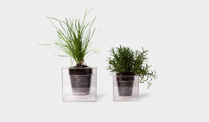 Interesting ways to Display Plants - Small Space Living