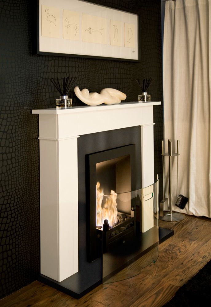 An Alternative Eco Friendly Fireplace Bioethanol Fires