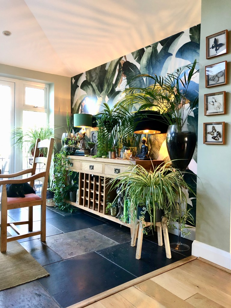 The Natural Environment, Biophilic Design, Our Homes & Our Wellbeing | With more homes featuring wooden flooring and open spaces, noise can be a problem. Houseplants help absorb sound as well as reducing the amount of dust in the home.