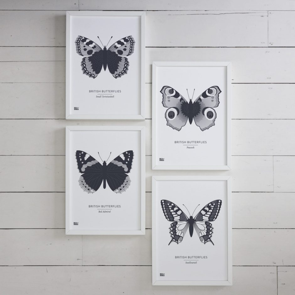 Set of Four 'British Butterflies' in Sheer Slate - Bold & Noble