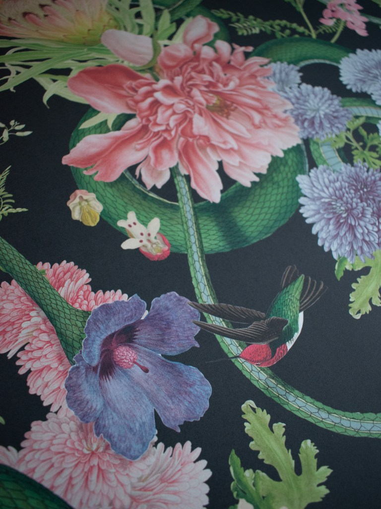 Divine Savages Collaboration with the Natural History Museum Forbidden Bloom wallpaper in black. Large scale botanical and reptile design.