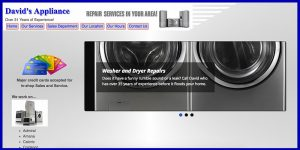 David's Appliance web design Green Bay, WI