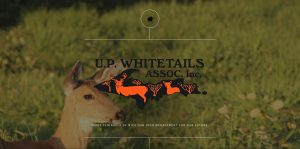UP Whitetails