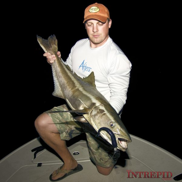 Night Cobia Hogy Aftco WM