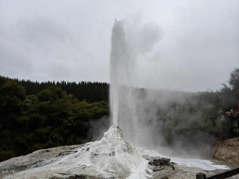 Rotorua03