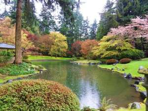 green space designed in the style of a Japanese garden