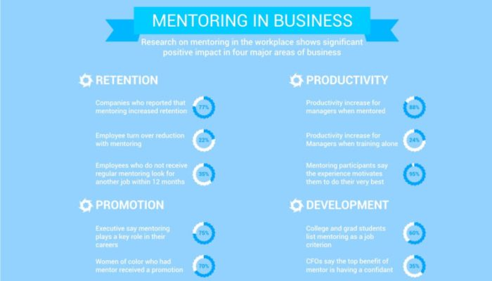 Infographic: Mentoring at a Glance