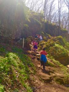 One of many picturesque hiking trails at Maquoketa Caves State Park.