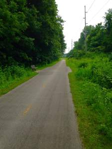 The trail is very well maintained and will offer some glorious Linn County summertime scenery.