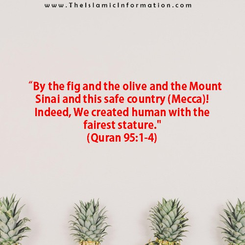 Quran about figs