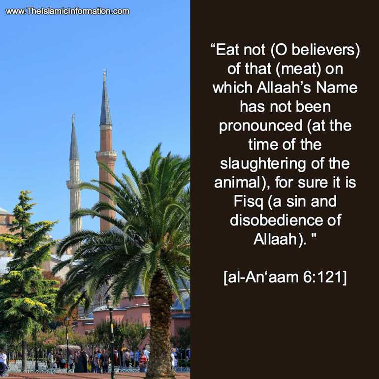 animal slaughter quran