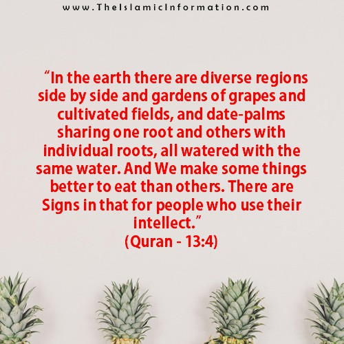 quran about dates