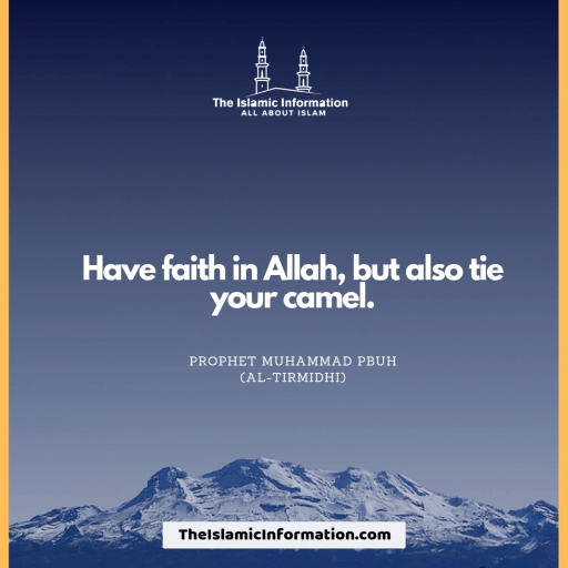 Have faith in Allah, but also tie your camel.