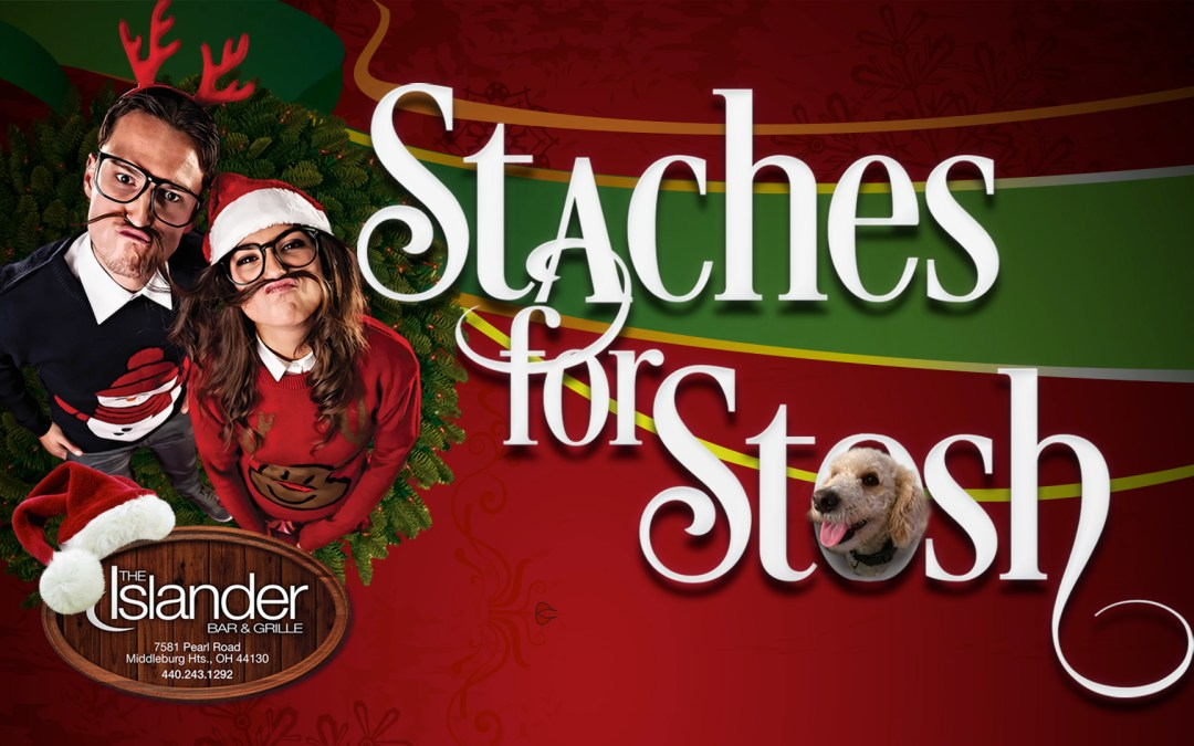 'Stashes For Stosh Holiday Fundraiser