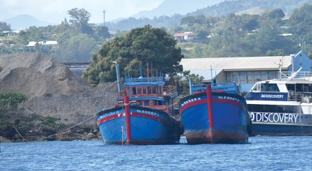 Alien rodents in Vietnamese boats raises fear at Hakama