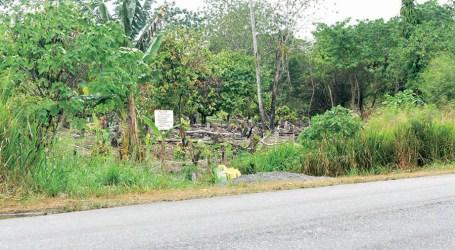 Development raises concern