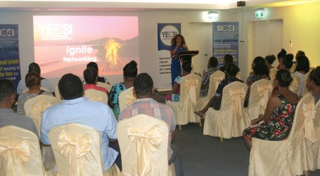 YECSI hosts first networking event