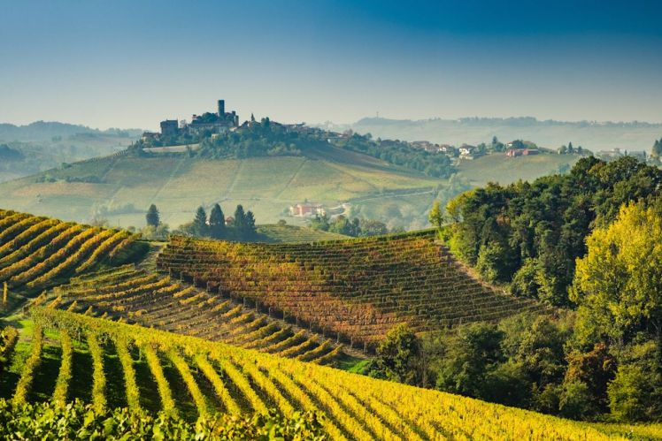 Langhe-vineyards-of-Piedmont-Italy-in-autumn