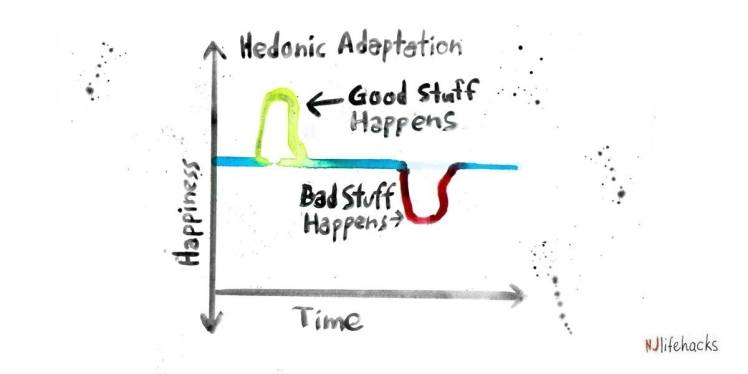 HEDONIC-ADAPTATION