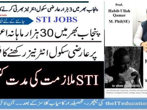 School Teacher Interns STI Jobs Tenure and Term of Internship