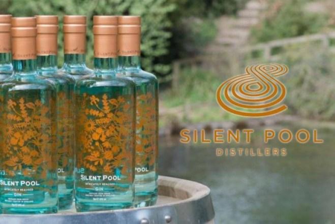 Gin-at-the-pool-logo-544x364