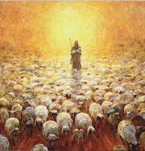 Jesus-Good-Shepherd-follows-sheep