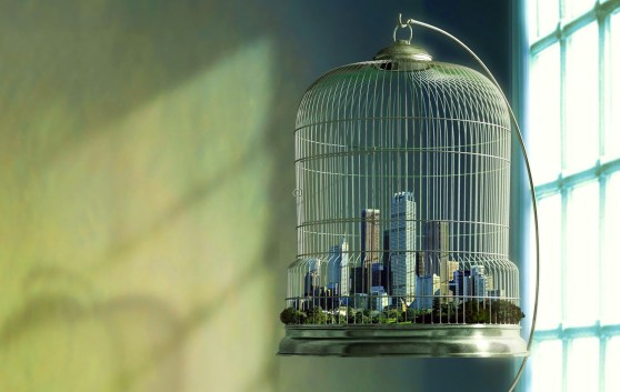 city-in-a-birdcage1