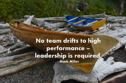 Leadership is required for high-performing teams