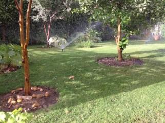 Irrigation back section 5.16
